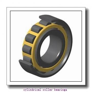 190 mm x 290 mm x 100 mm  NACHI 24038E cylindrical roller bearings
