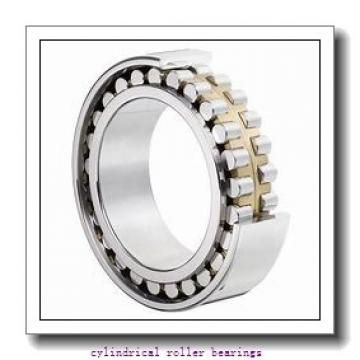 75 mm x 130 mm x 25 mm  ISO NUP215 cylindrical roller bearings