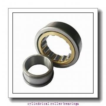 100 mm x 250 mm x 58 mm  NSK NJ 420 cylindrical roller bearings