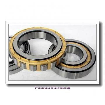 75 mm x 160 mm x 37 mm  NTN NF315 cylindrical roller bearings